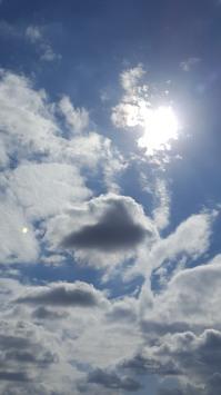 January Texas sky, Pamela Bunn