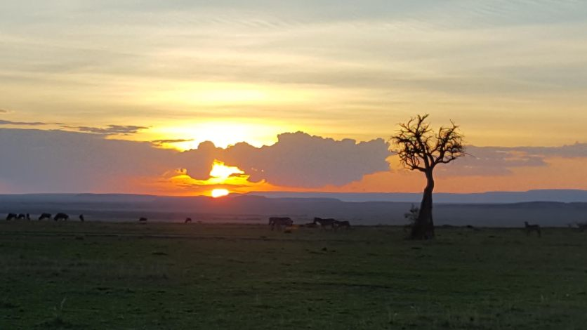 Kenya Sunset 3 10-16