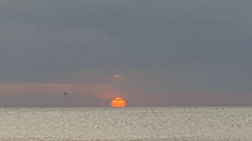 Orange ball on horizon in grey