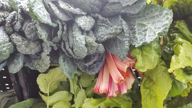 Vegetables, Charlottesville Farmers Market 3