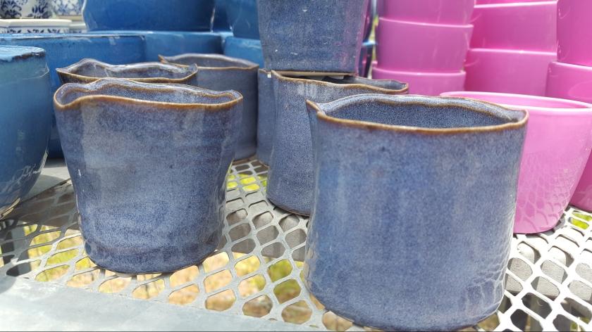 Pots at Austin succulents, Austin, TX