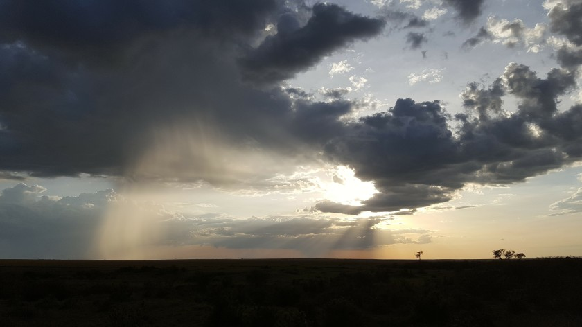 Sunset at Masai Mara, rain storm