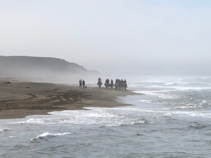 Pacific Coast, foggy w horses riding away
