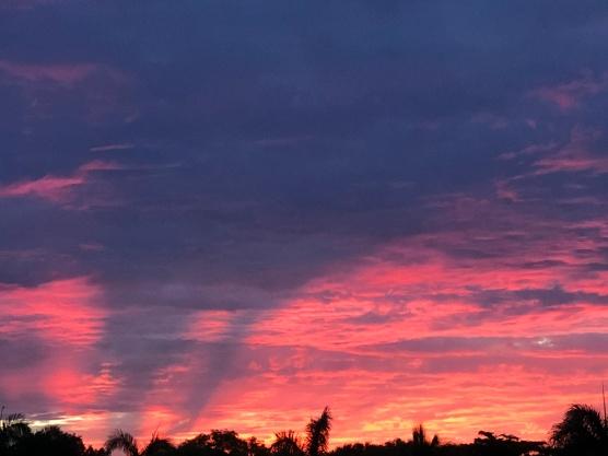 Sunrise glory 2, August