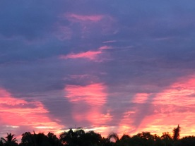 Sunrise glory 3, August