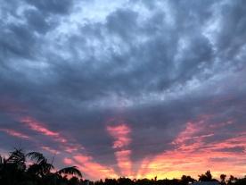 Sunrise glory 4, August
