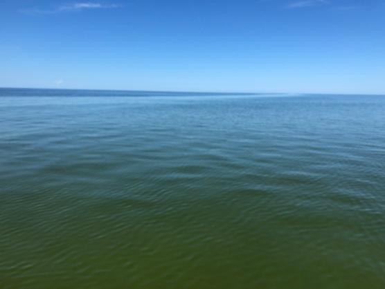 Calm Gulf, morning
