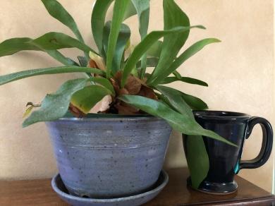 Clay pot and mug
