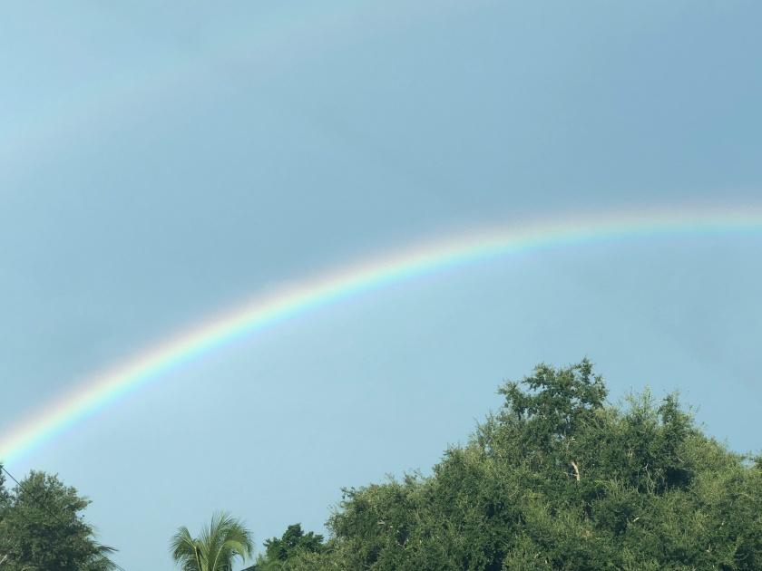 Rainbow, Sunday morning