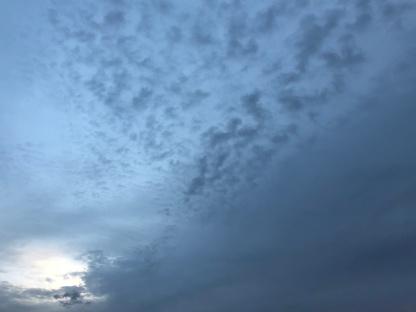 November dawn 2
