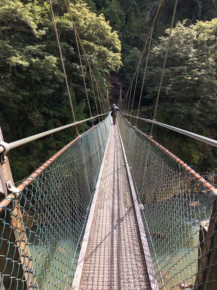 Suspension Bridge, W Coast NZ