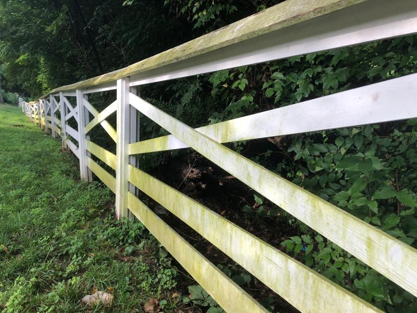 Fence 2, white
