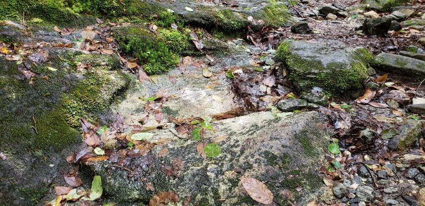 Wet rocks, slippery path, Highlands