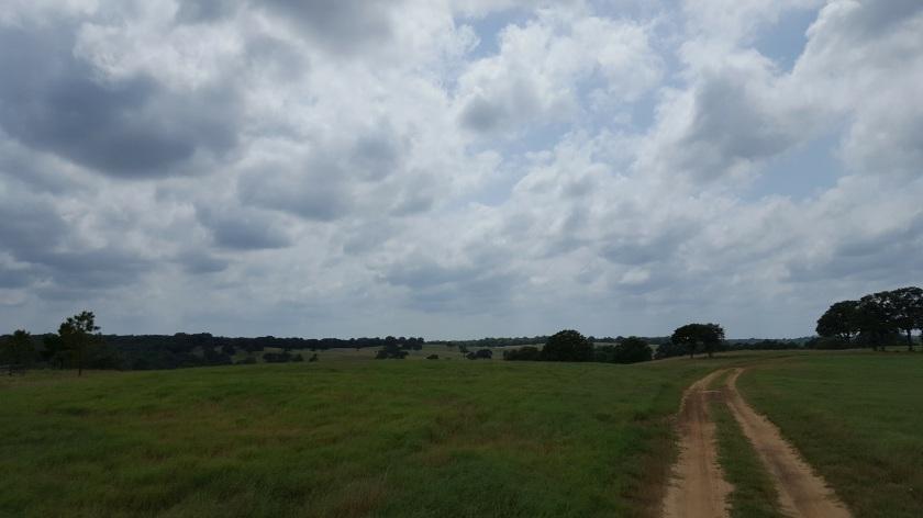 Long road ahead, Barefoot Ranch TX