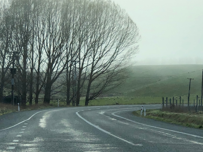 Damp winding road in fog, Southland, NZ
