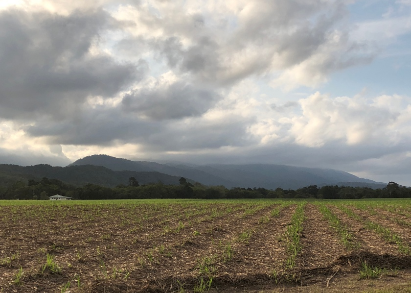 Fallow fields w mountains, clouds, Queensland, Australia