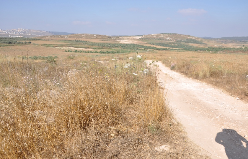 Dirt road to sea, Israel