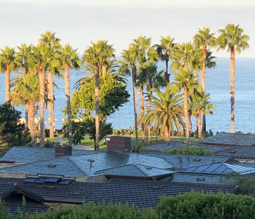 Wet roofs at Laguna