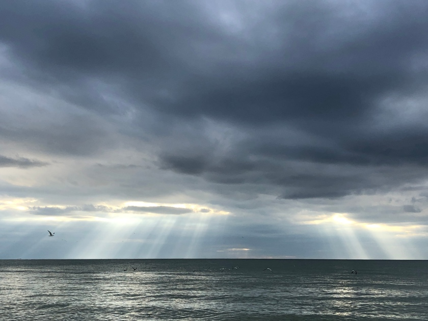Sun rays  and rain from storm clouds, w gull, over Gulf