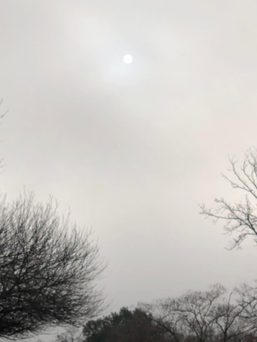 Morning sun in fog, Christmas, Austin