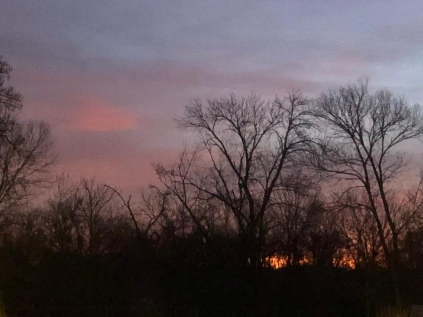 Winter dawn in St. Louis, Lindeman