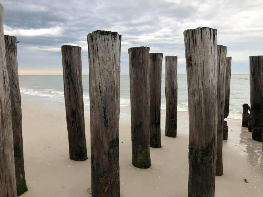 Pilings at Gulf's edge
